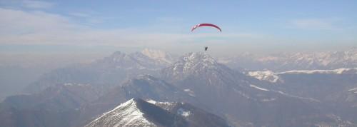 Stenella vola in Valcava - Rodolfo Saccani